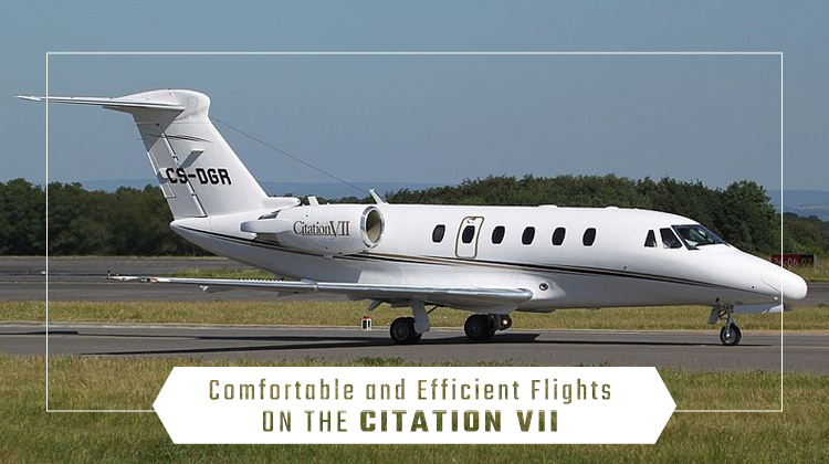 Private Citation VII