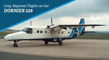 Private Dornier 228